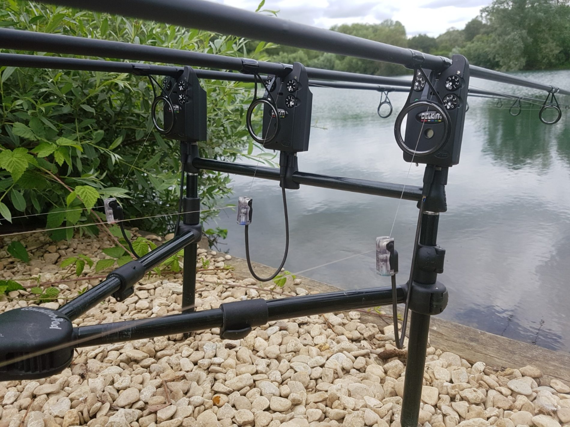 How to Fish For Carp in Weed