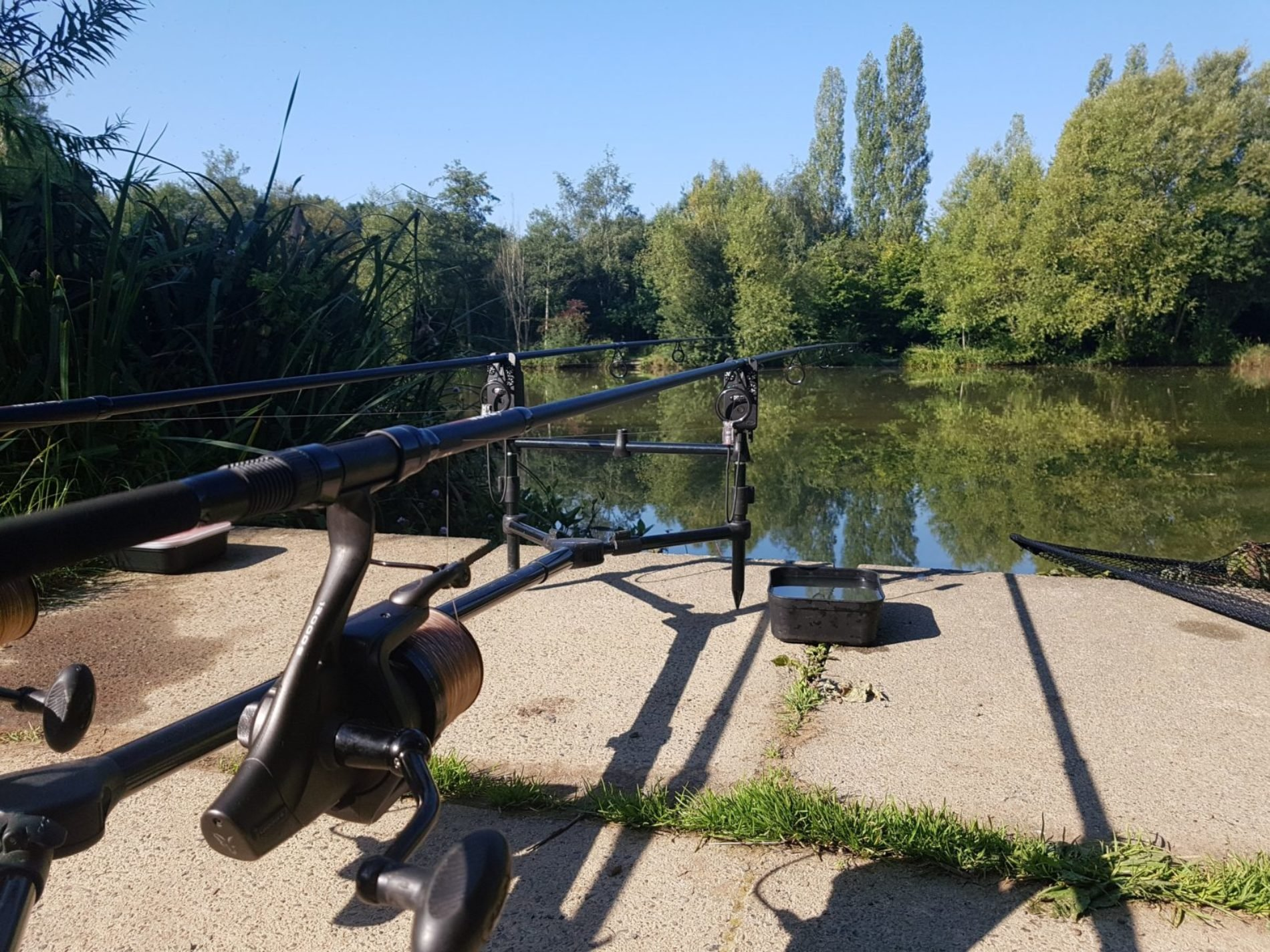 Which Carp Fishing Rod