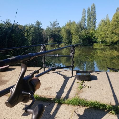 Which Carp Fishing Rod