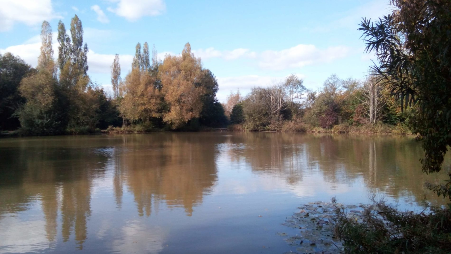 Winter Carp Tips – 5 Tips To Help Improve Your Rigs